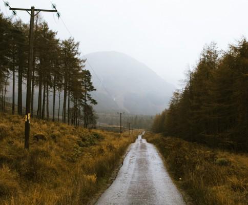 Long Road Home